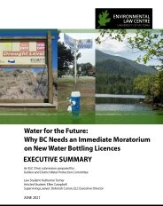 Cover 2020 01 02 Water For The Future Executive Summary Final
